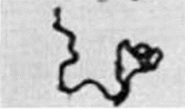 "Figure 2B. Serpentine Form of ""Chords"" of Lethal Tubercle Bacilli."
