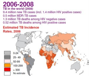 "Figure 8: Map showing the true severity of the tuberculosis problem; in 2006-2008 - the last period before WHO's TB statistics dived as a result of including many TB cases into the wastebasket of ""AIDS-defining illness"". Note that the darker-colored regions are mostly in Africa. (Source: WHO)"