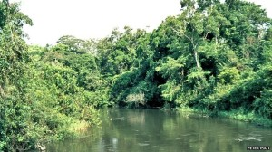 Figure 3. The Ebola River, Circa 1976.